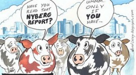 "Nyberg Report Identifies ""Herd Mentality"" In Irish Banking"